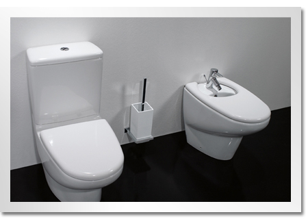 Care And Maintenance Toilet And Bidet Seats